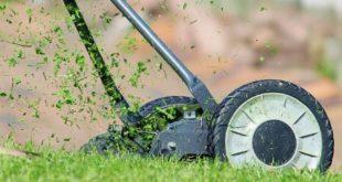 Wie die Profis einen Rasen anlegen